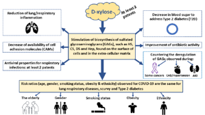 D-Xylose stimulates GAG biosynthesis and potentiates treatment of COVID-19 and associated diseases
